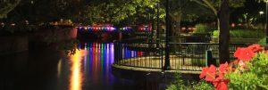 Lights Everywhere by Susan Bond